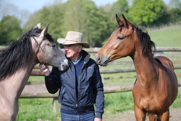 I consigli di Michel Robert – I cavalli giovani e il tempo