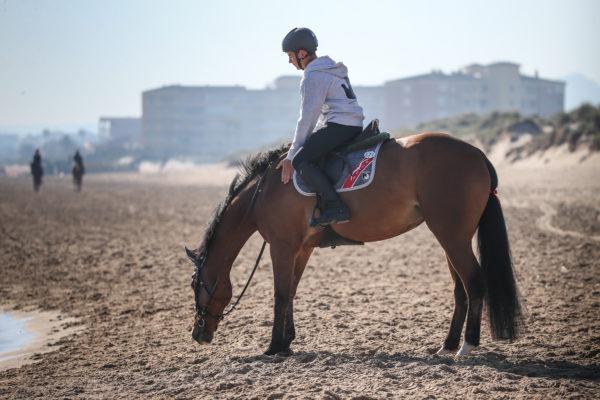 I consigli di Michel Robert – Nei panni del cavallo
